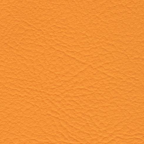 Pomarańczowy